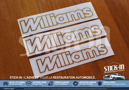 3 stickers monograms Renault Clio Williams phase 1 gold