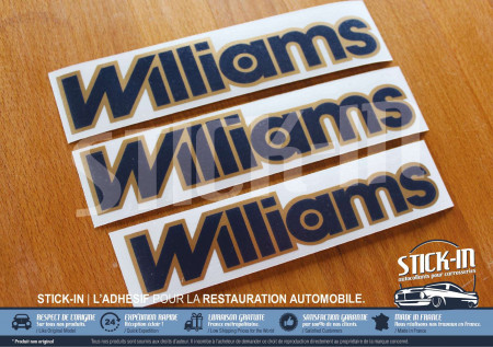 3 stickers monograms Renault Clio Williams fase 2 blue and gold